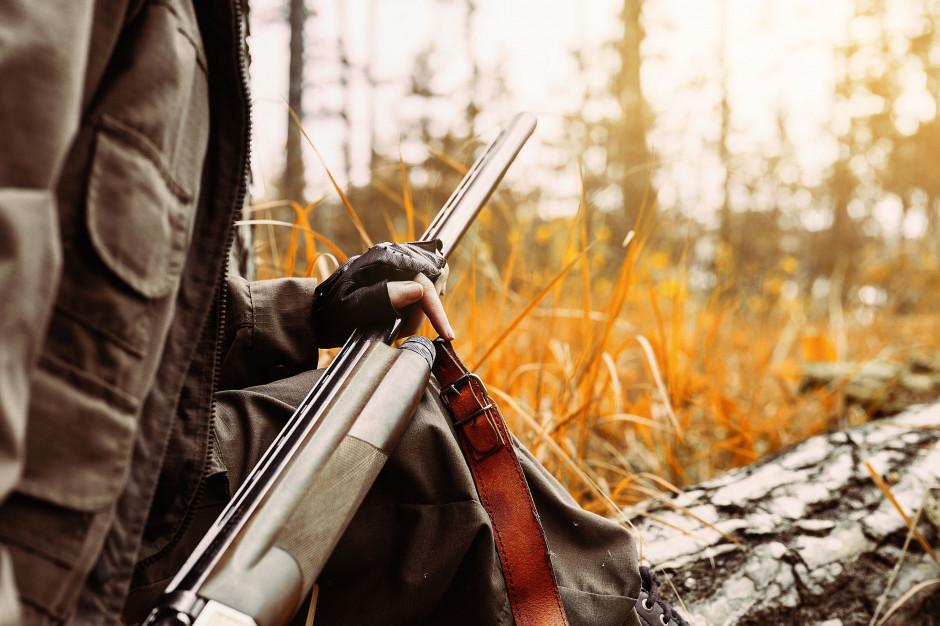 Radni Krakowa zadecydują o zakazie polowań na terenie miasta