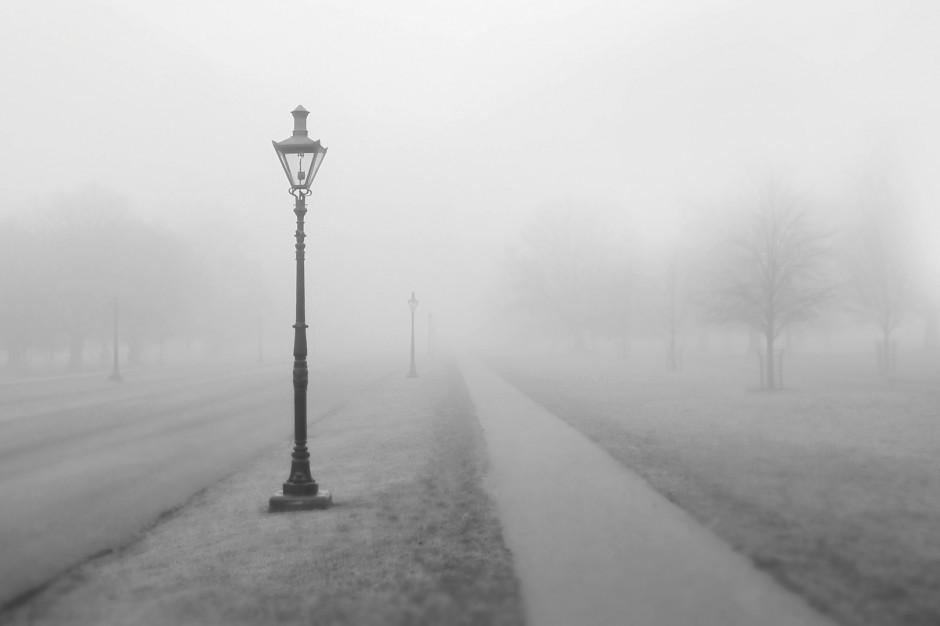 IMGW ostrzega przed gęstą mgłą