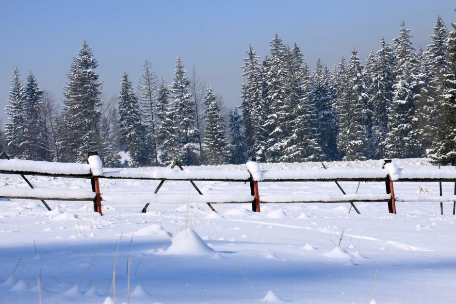 Zimą Polacy najchętniej jeżdżą w Tatry, Beskid Śląski i Karkonosze