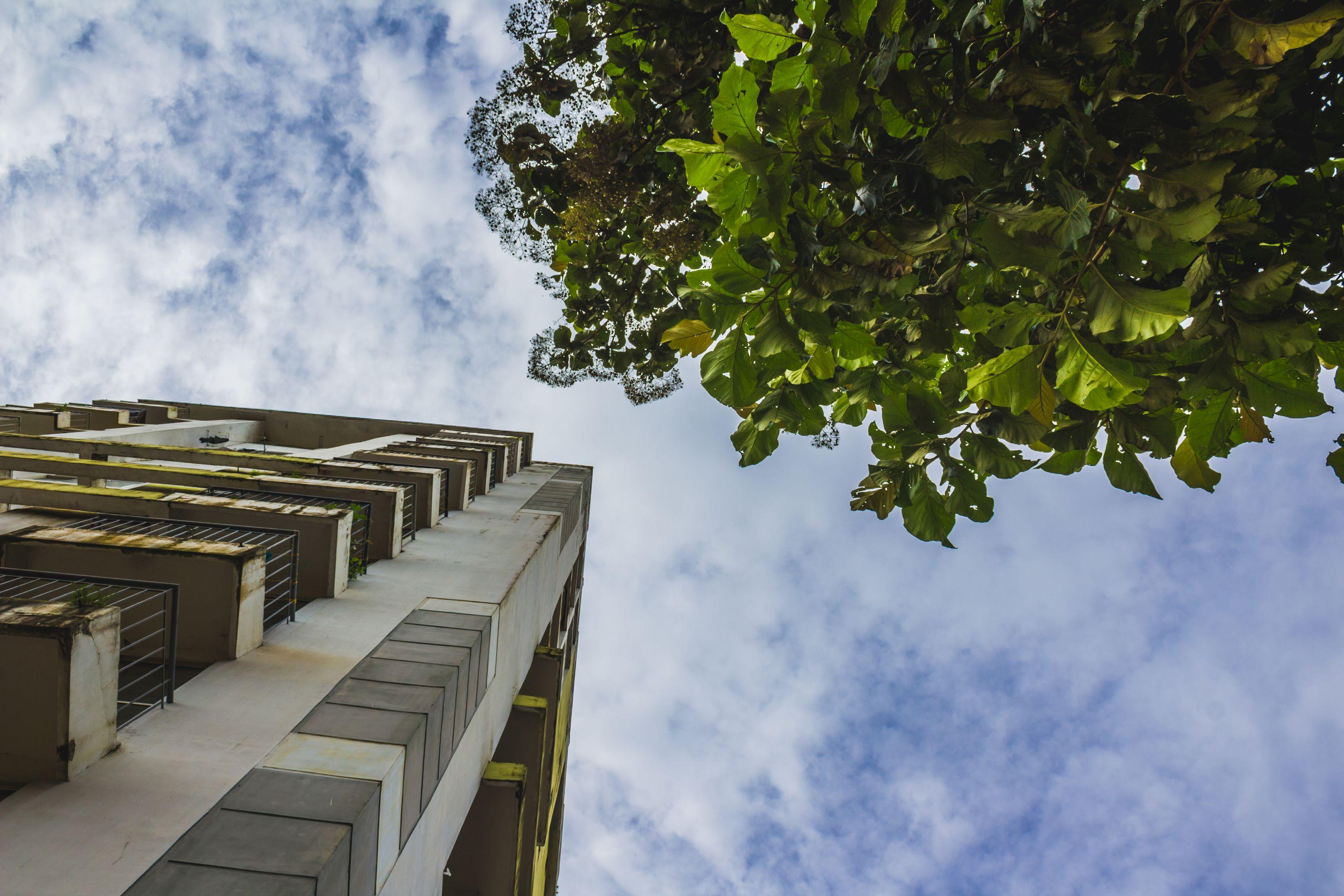 Dyrektywa pozwala na szeroki udział społeczeństwa w podejmowaniu decyzji oraz dostęp do wymiaru sprawiedliwości w przypadku inwestycji mogących wpływać na środowisko (fot. pxhere.com)