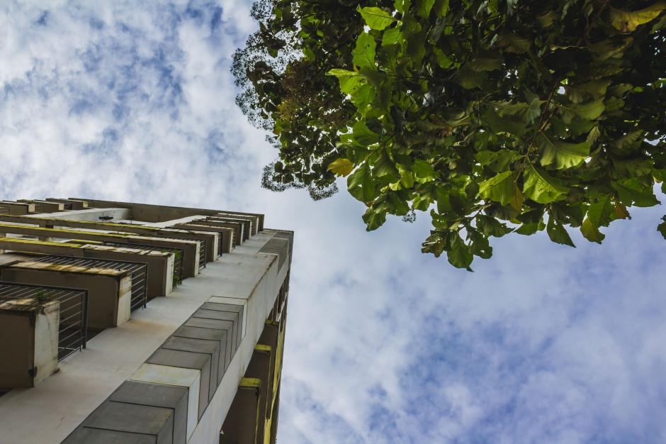 Budynki są gotowe na zmiany klimatu?