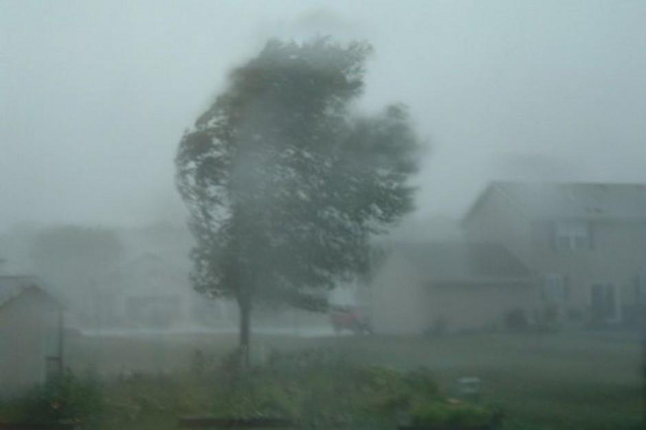 Łódzkie: Ponad 4 tys. odbiorców bez prądu z powodu silnego wiatru
