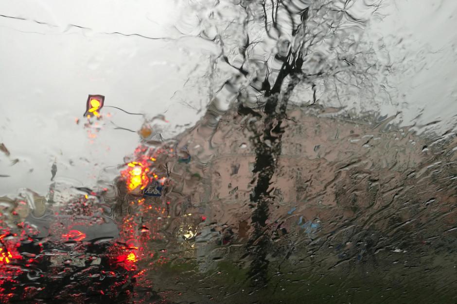 Warmińsko-mazurskie: 50 interwencji strażaków w związku z silnym wiatrem