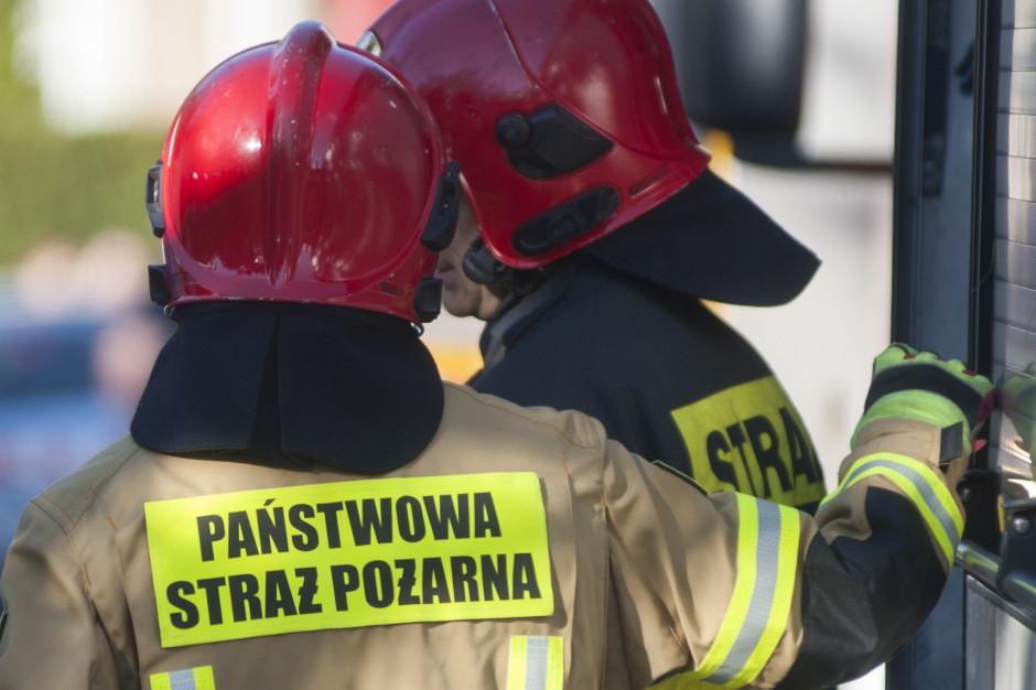 Kujawsko-pomorskie: 40 interwencji strażaków w związku z silnym wiatrem