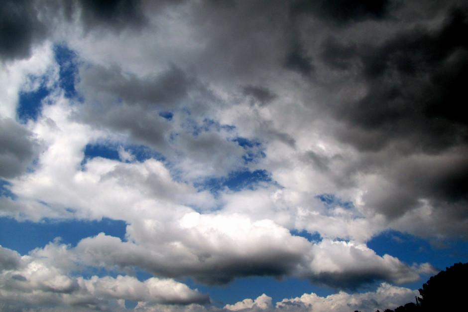 MSWiA: Strażacy walczą ze skutkami huraganowych wiatrów