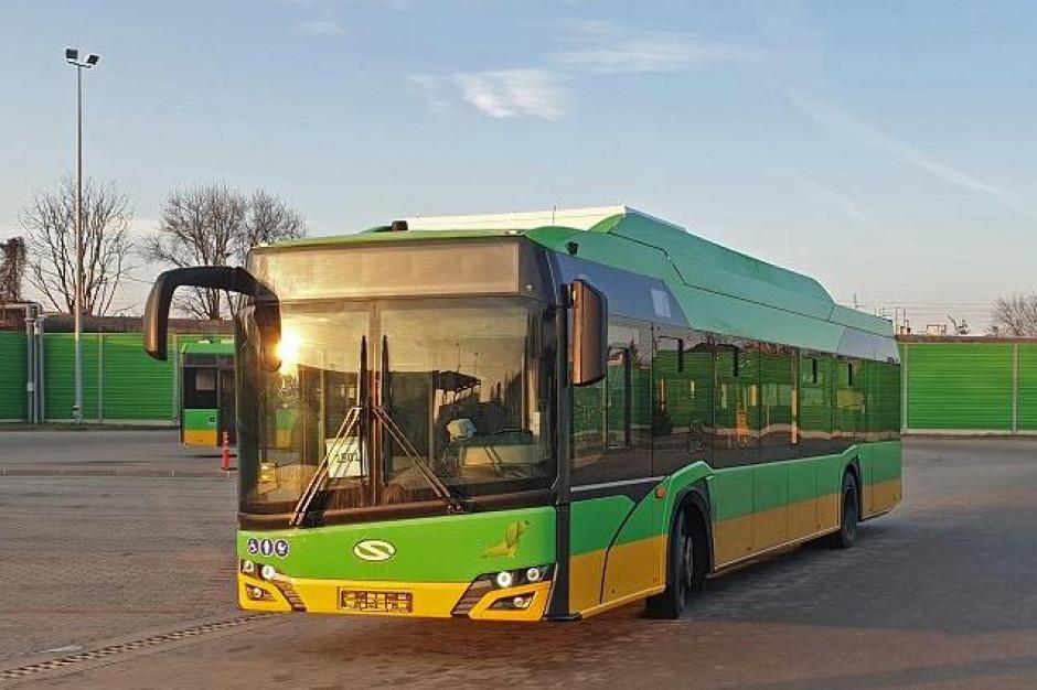 Poznań: Miejski przewoźnik wzbogacił się o e-autobusy z panelami fotowoltaicznymi