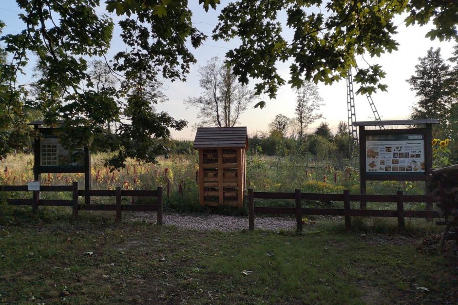 Hotele i ogrody dla dzikich pszczół w Kotlinie Kłodzkiej