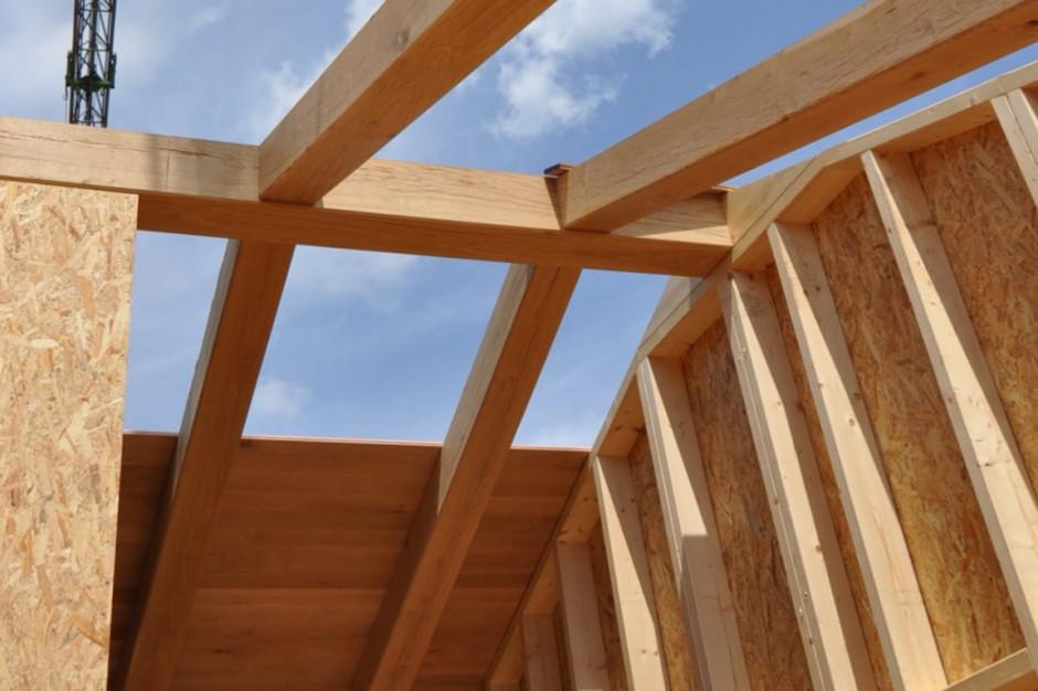 Łódź i Białystok. To tu ruszy rządowy projekt drewnianych domów