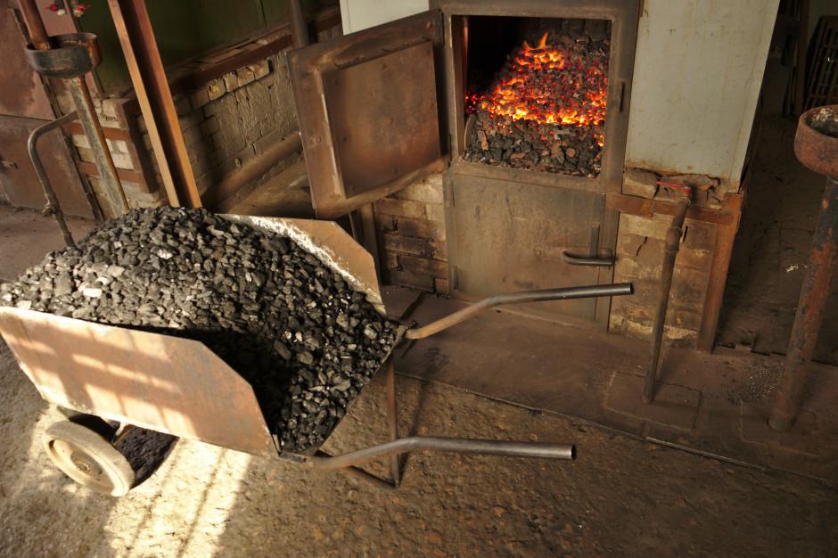 Zakaz palenia węglem w województwie śląskim. Tego chcą społecznicy