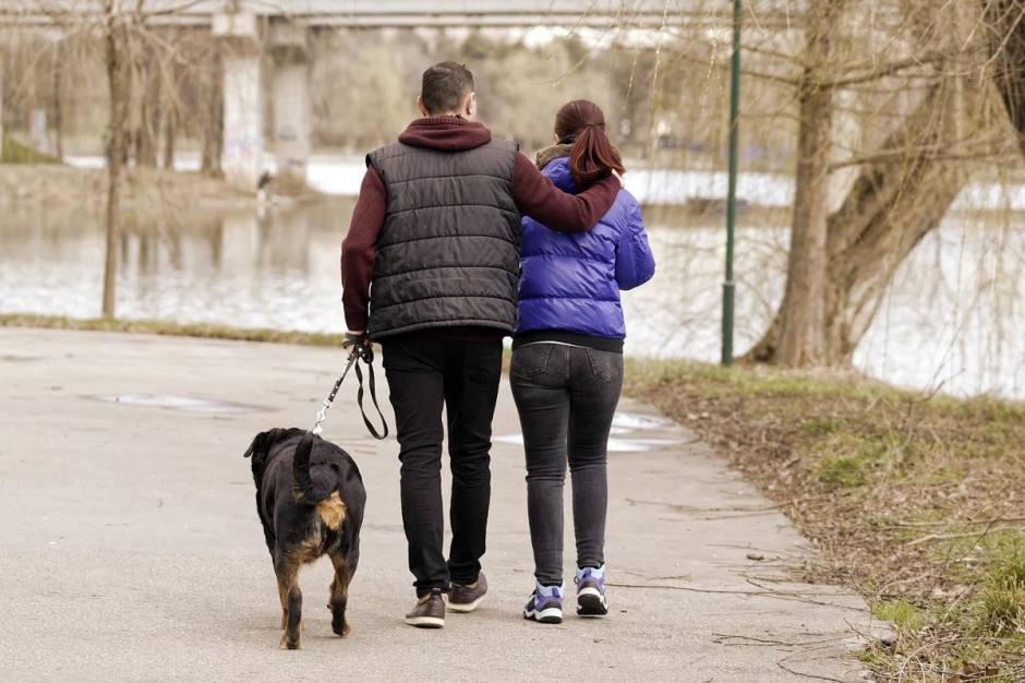 Białystok: Ruszył miejski program kastracji właścicielskich zwierząt