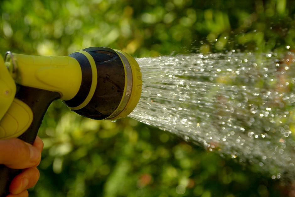 Zakaz podlewania ogródków z powodu suszy. Kara nawet 5 tys. zł