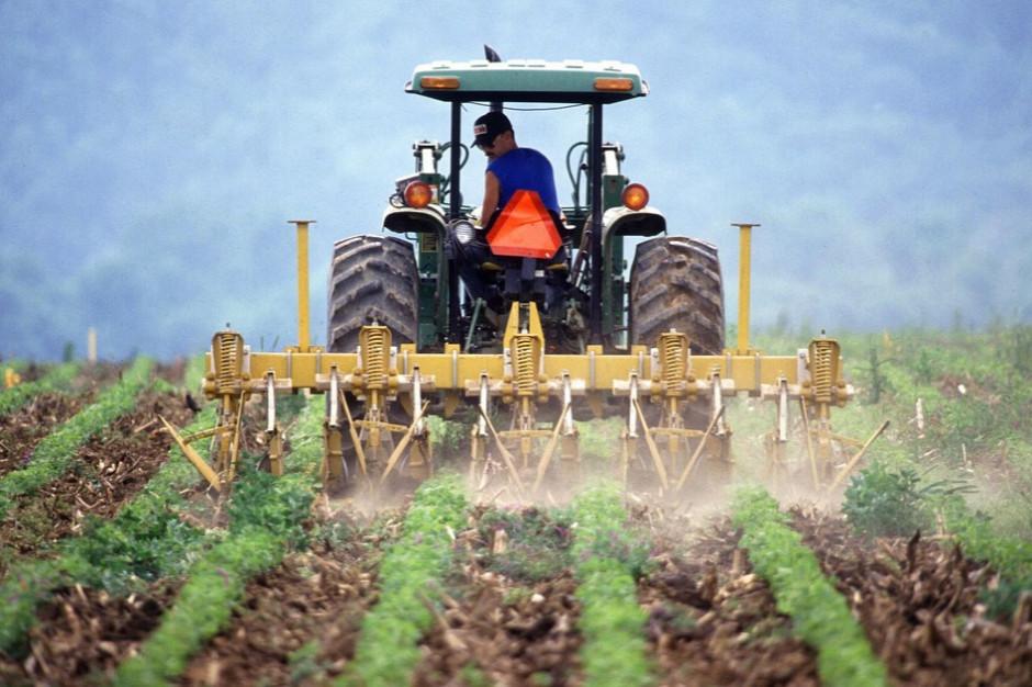 ARiMR: połowa rolników złożyła wniosek o dopłaty za 2020 r.