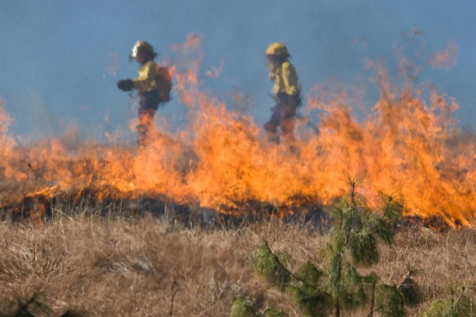 Wypalanie traw jest bardzo niebezpieczne