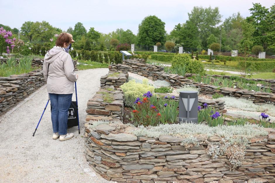 Kielce: Otwarto ogród botaniczny - z alpinarium i jaskiniami