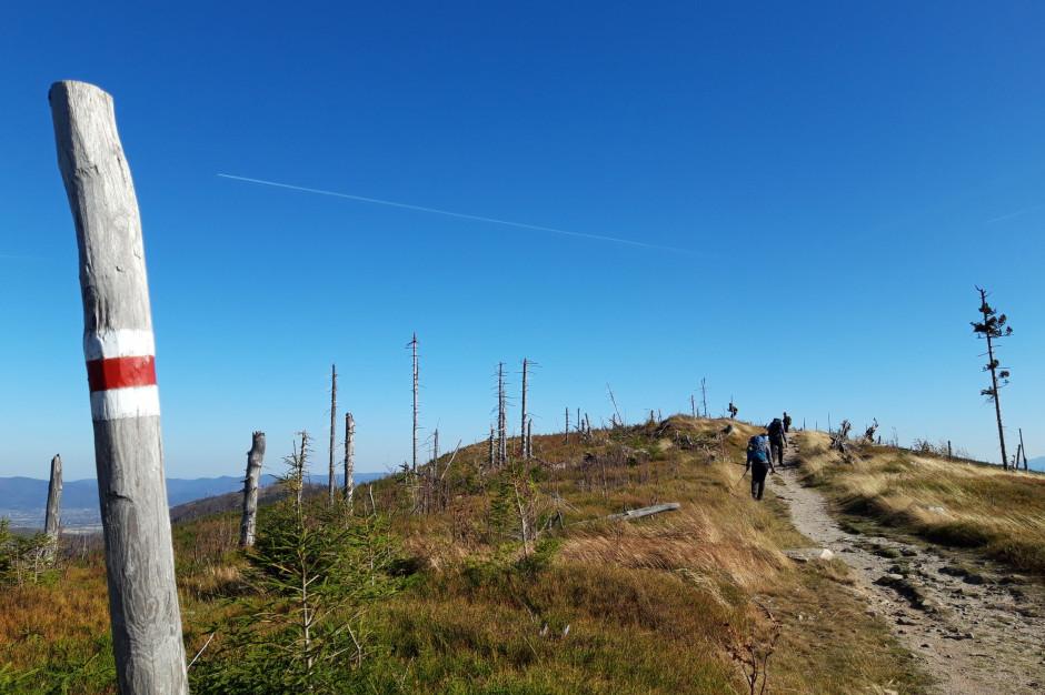 Lepsze warunki na szlakach w Beskidach. Samorządowcy apelują o rozsądek
