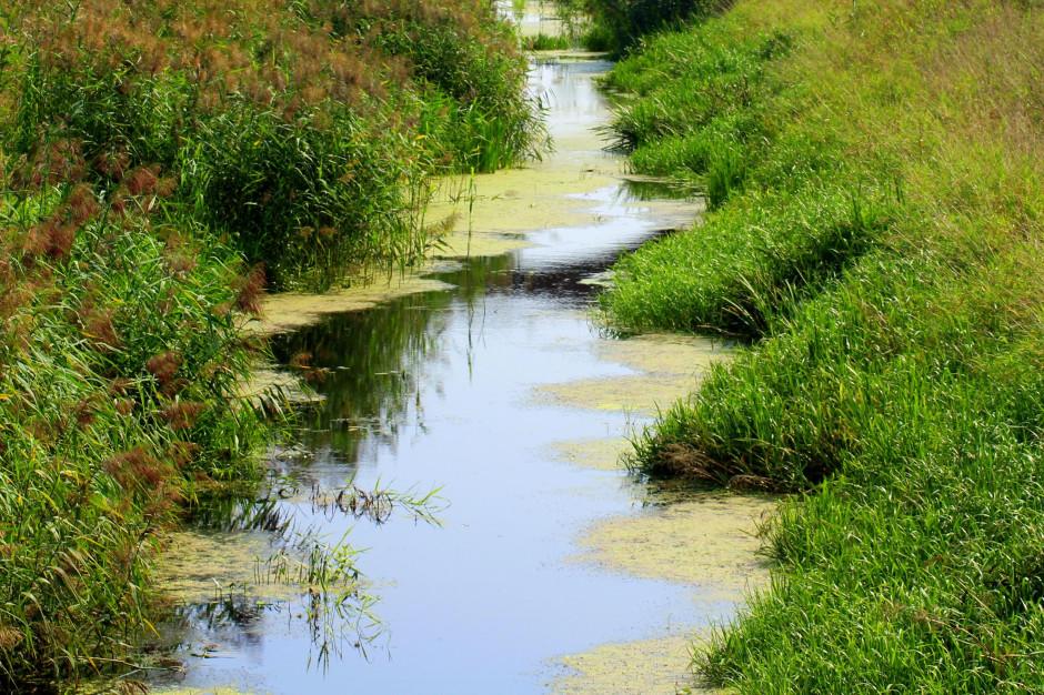 Wody Polskie: Ponad 160 mln zł na inwestycje w lepszą retencję wód