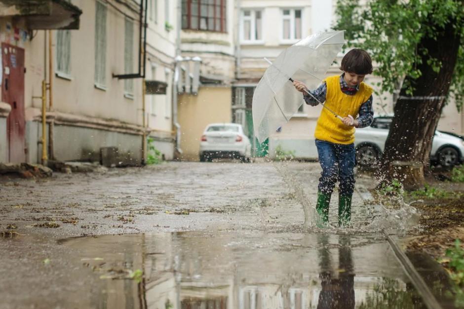 Sulejówek i Zielona Góra dostaną prawie 47 mln zł na systemy gospodarowania deszczówką