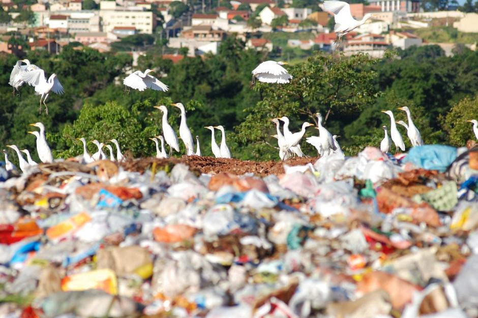 Odpady i zużycie wody w Polsce w liczbach według GUS