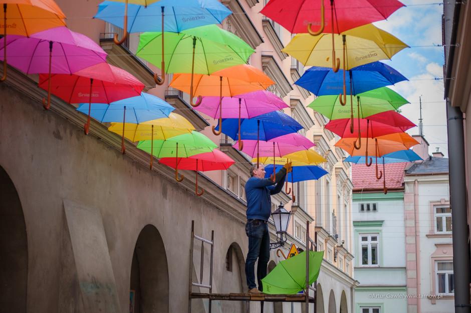 Kolorowe parasolki znów na Piekarskiej w Tarnowie