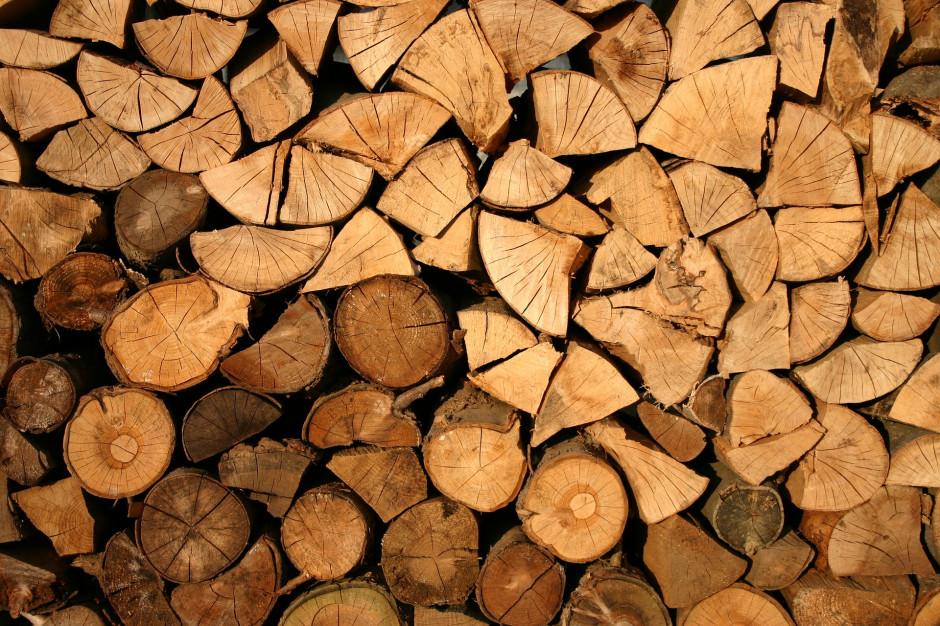 Drewno energetyczne zmienia definicję by zwiększyć podaż biomasy