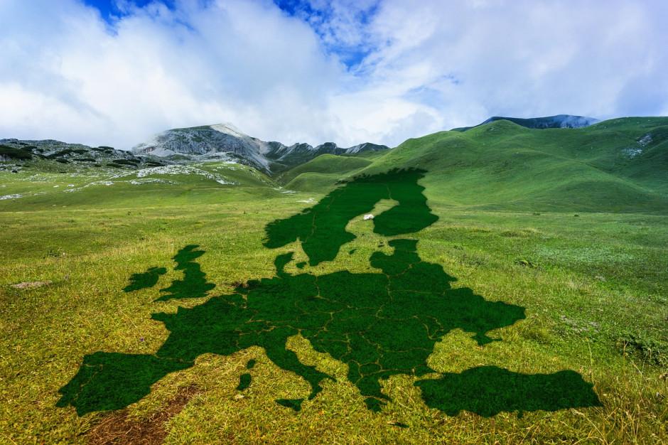 Regiony Europy stworzą grupę do spraw Zielonego Ładu