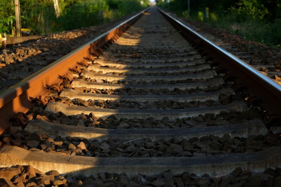 Radni ujęli się za rewitalizacją linii kolejowej Żywiec – Sucha Beskidzka