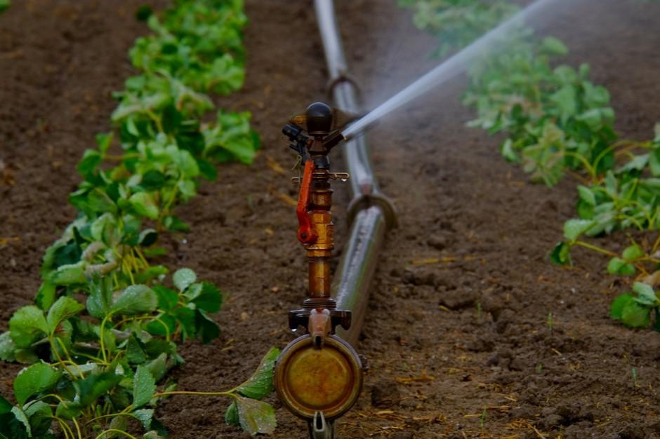 Samorząd Mazowsza dofinansuje walkę ze smogiem w gminach i z suszą w powiatach