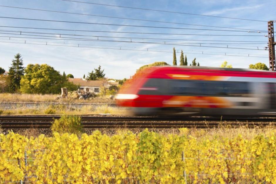Wakacyjne kontrole pociągów. Ważne nie tylko maseczki