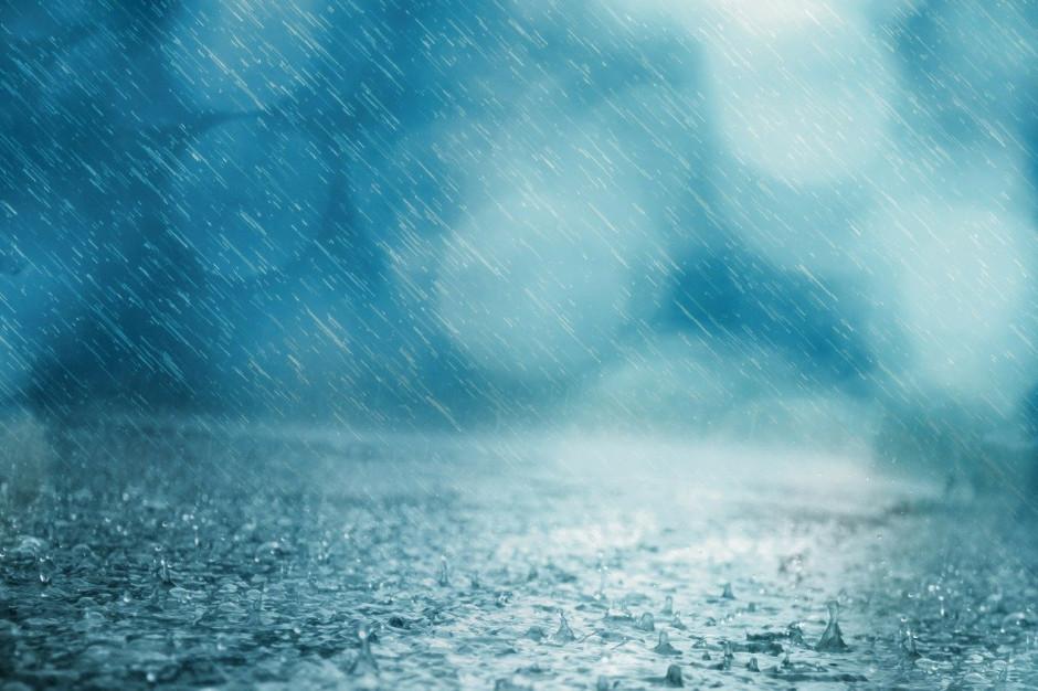 Prawie 700 interwencji związanych z silnym wiatrem i opadami deszczu