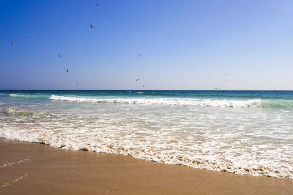 Pomorskie: Wszystkie nadmorskie kąpieliska bez sinic