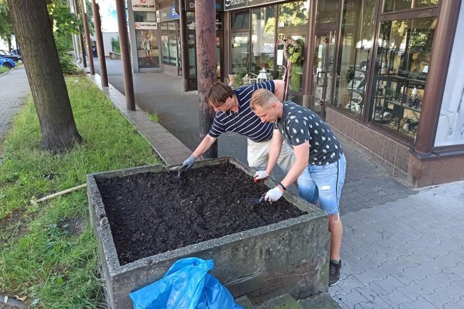 Mieszkańcy Katowic adoptują... donice. To pomysł na zieleń w mieście