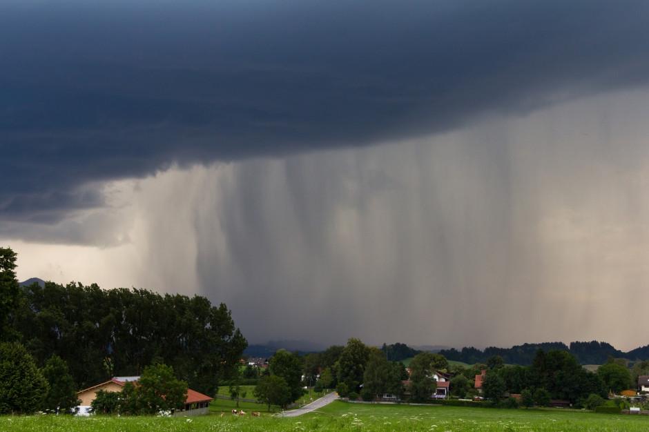 PSP: pół tys. interwencji związanych z silnym wiatrem i opadami deszczu