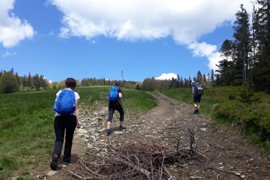 Beskidy: Dobre warunki na szlakach; w górach jest słonecznie
