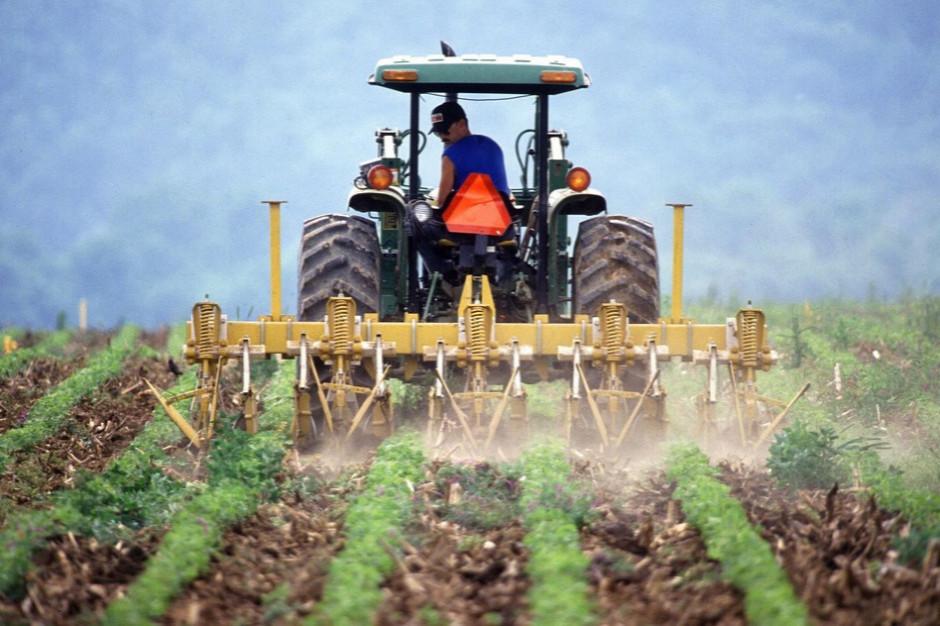 ARiMR: do końca sierpnia wnioski na odtworzenie potencjału gospodarstwa