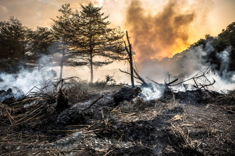 Podlaskie: Pożar hałdy odpadów na wysypisku śmieci w Czartorii