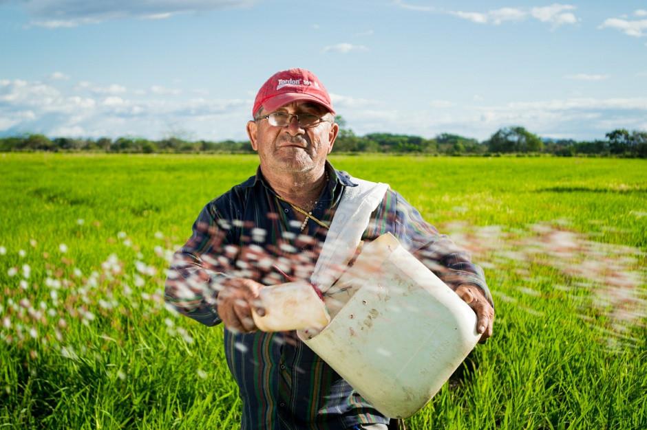 1 września rozpocznie się Powszechny Spis Rolny