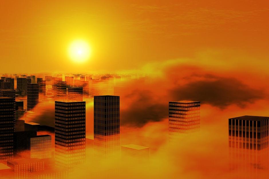To miasta mają zmieniać świat. Także polskie