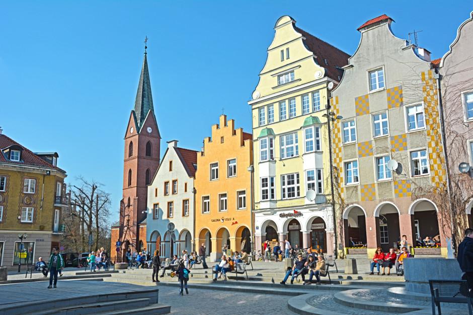 W Olsztynie posadzono 280 drzew