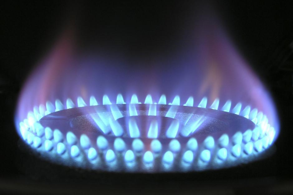 Gospodarka energetyczna i gazownictwo w 2019 r. Najnowsze dane GUS