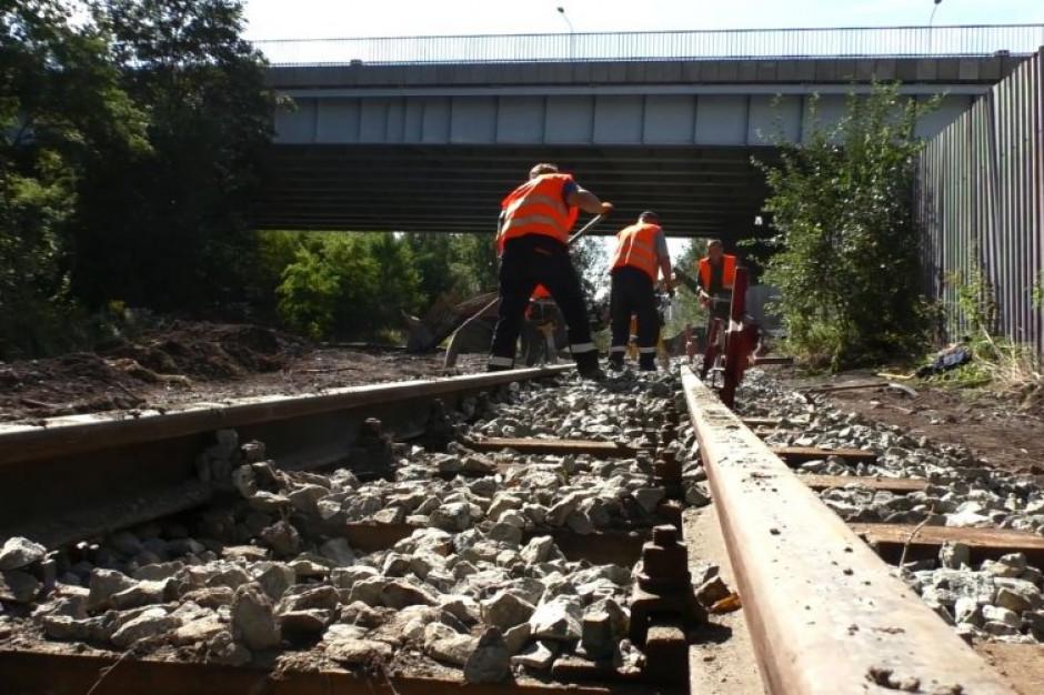 Trwa remont torowiska Górnośląskiej Kolei Wąskotorowej