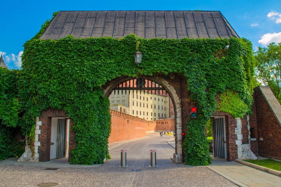 Kraków znów powalczy o tytuł Zielonej Stolicy Europy