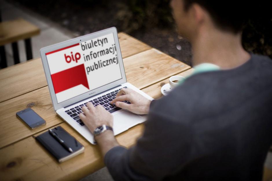BIP-y i urzędowe strony www bardziej dostępne. Inaczej kara
