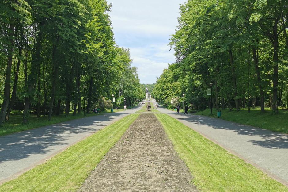 Śląskie: Metropolia zebrała dane o swoich terenach zielonych