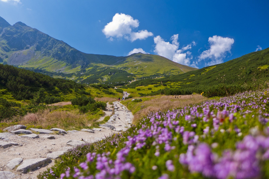 Tatry: Obowiązkowe maseczki na górskich szlakach