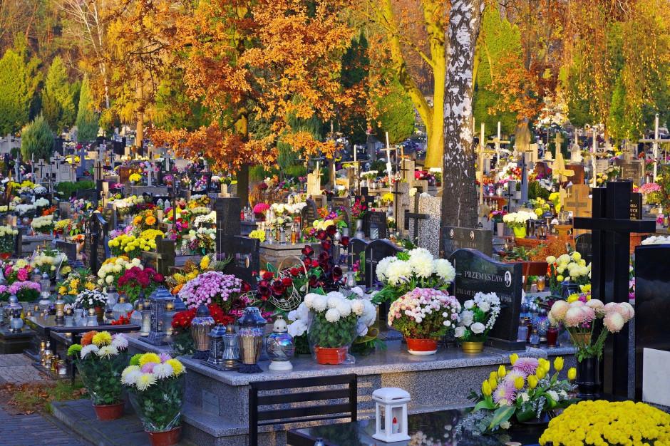 Gdańsk: Cmentarze i parki zamknięte z powodu silnego wiatru