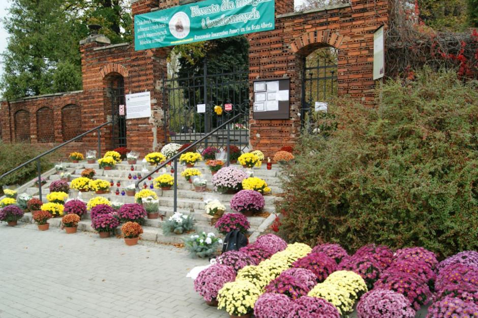 Samorządy Rzeszowa i Stalowej Woli pomagają sprzedawcom chryzantem