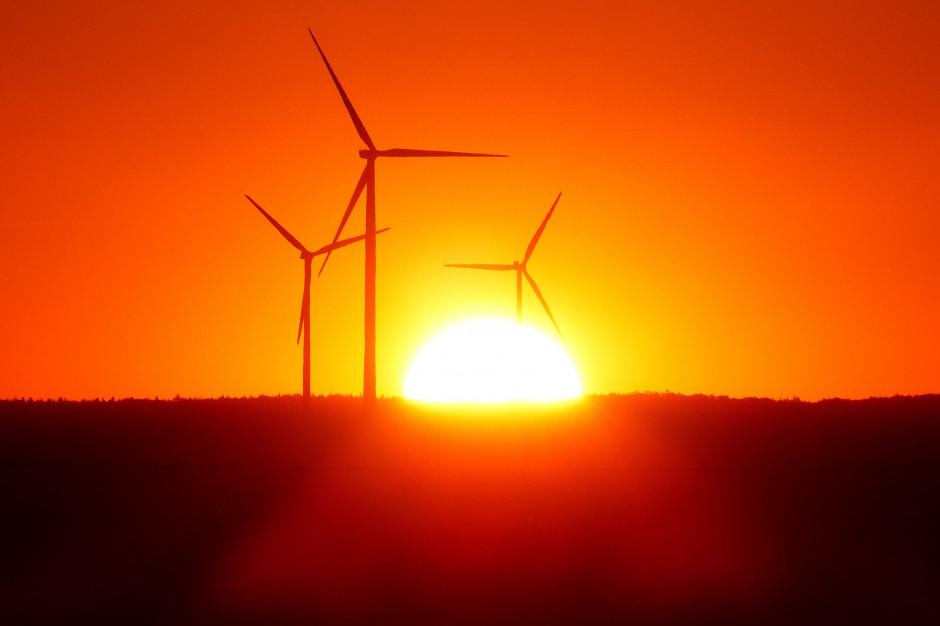 W 2025 r. globalna produkcja prądu z OZE prześcignie tę z węgla