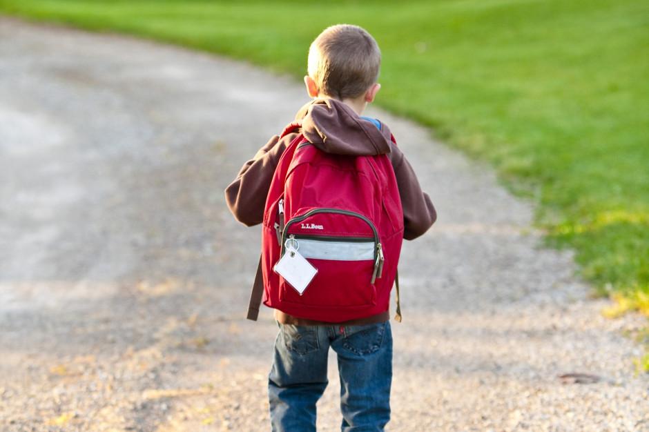 Wydłużono ograniczenie stacjonarnego funkcjonowania szkół