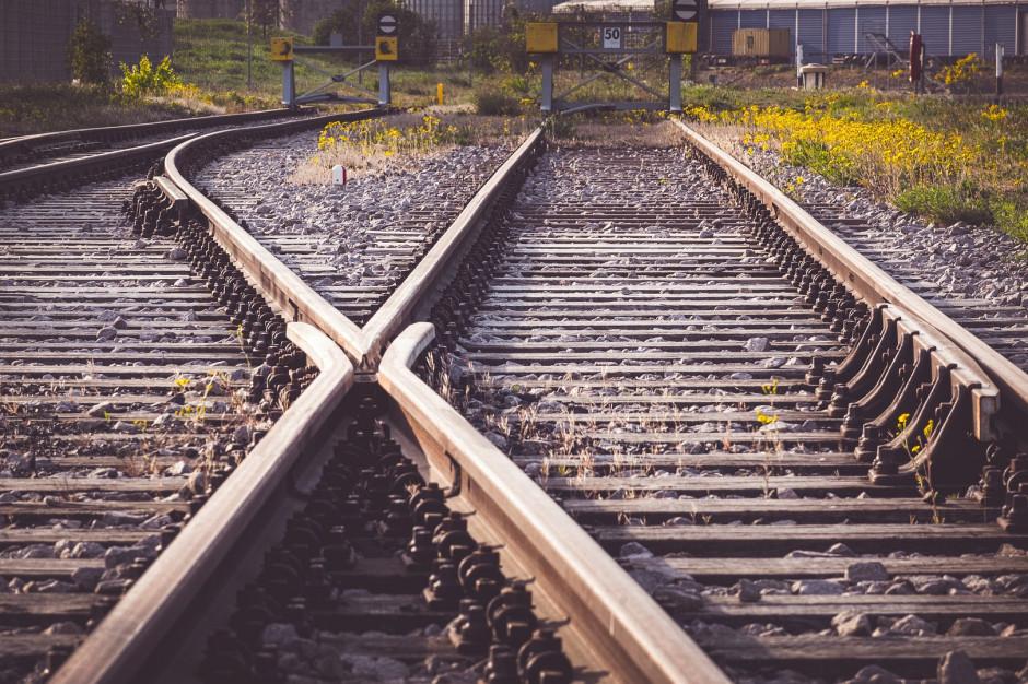 Tymczasowy tor w związku z modernizacją linii kolejowej Poznań-Szczecin