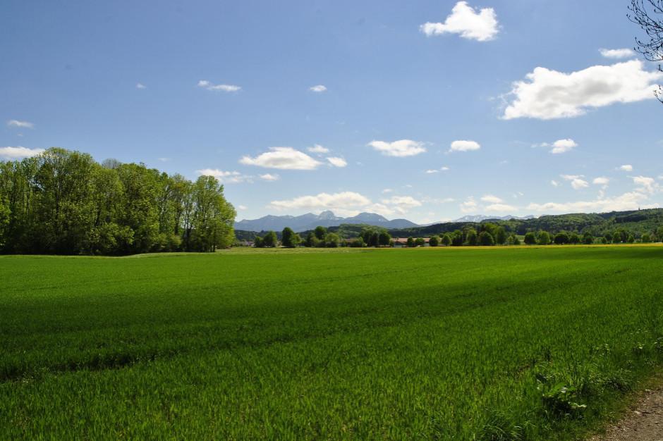 Ruszają prace nad uproszczeniem procesu odrolnienia gruntów przez samorządy